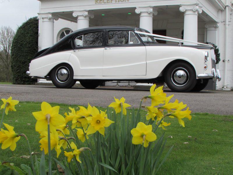Regency Carriages - 1957 Austin Princess DS7 Saloon